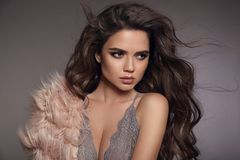 Sexy brunette in gray lace lingerie. Fashion studio portrait of. Beautiful girl with long curly hair and evening makeup wearing in pink fur coat. Vogue style Royalty Free Stock Image