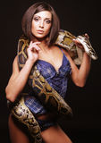Sexy brunette holding python Royalty Free Stock Photography