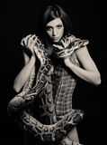 Sexy brunette holding python Royalty Free Stock Photos