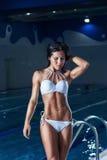 Sexy brunette model in bikini posing at the pool Stock Photos