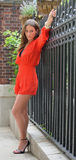 Sexy brunette model poses along iron fence Stock Image