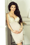 Sexy brunette pregnant woman. Royalty Free Stock Photography