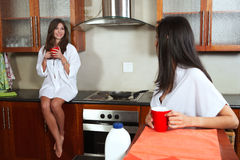 Sexy brunette roommates Royalty Free Stock Image