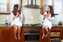 Sexy brunette roommates Royalty Free Stock Images
