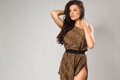 Sexy Brunette Wearing Leopard Fur Royalty Free Stock Photos
