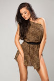 Sexy brunette wearing leopard fur. Sexy girl wearing leopard fur Royalty Free Stock Image
