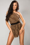 Sexy brunette wearing leopard fur. Sexy girl wearing leopard fur Royalty Free Stock Photos