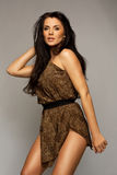 Sexy brunette wearing leopard fur Stock Images