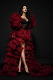 Sexy brunette woman in black underclothes and red fluffy bolero Stock Image