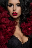 Sexy brunette woman in black underclothes and red fluffy bolero Stock Images