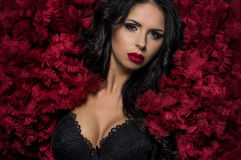 Sexy brunette woman in black underclothes and red fluffy bolero Stock Photography