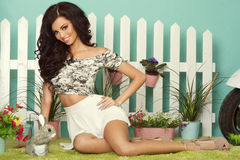 brunette woman posing. royalty free stock images