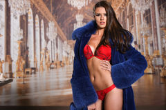 Sexy brunette woman posing in beautiful red lingerie and luxury fur coat Stock Photos