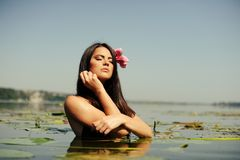 Sexy brunette woman in water Royalty Free Stock Photo