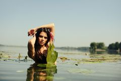 Sexy brunette woman in water Stock Images