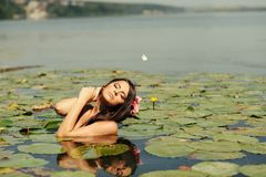 Sexy brunette woman in water Royalty Free Stock Photos