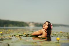 Sexy brunette woman in water Royalty Free Stock Images