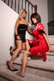 Sexy brunette women 2. Two hot sexy brunette women on stairs Stock Photo