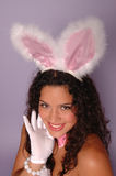 Sexy Bunny. Sexy Easter bunny smiling with fuzzy ears and gloves Stock Photos