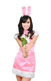 Sexy bunny girl hold pink rose Royalty Free Stock Images