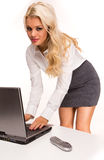 Sexy Business women Stock Photo