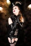 Sexy Cabaret Royalty Free Stock Image