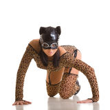 Sexy catwoman. Sexy girl wearing catwoman disguise Royalty Free Stock Photo