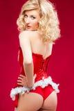 Sexy cheerful santa helper girl Stock Photography