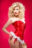 Sexy cheerful santa helper girl Royalty Free Stock Images
