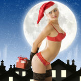 Sexy christmas in red Royalty Free Stock Photos