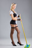 The sexy cleaner Royalty Free Stock Images