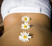Sexy daisy Stock Photos