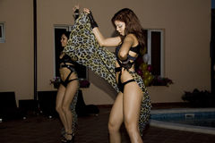Sexy dancers Stock Images