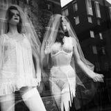 Sexy dans une fenêtre de boutique photos stock