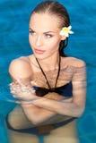 Sexy in de pool stock afbeelding