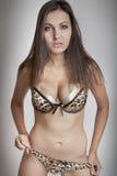 Sexy donkerbruin meisje in bustehouder, grote borsten Stock Foto