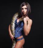 Sexy donkerbruine holdingspython royalty-vrije stock afbeeldingen