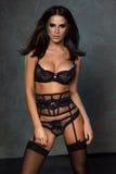 Sexy elegant brunette lady. Stock Photography