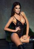 Sexy elegant brunette lady. Royalty Free Stock Image