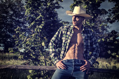 Sexy farmer or cowboy with unbuttoned shirt. Portrait of sexy farmer or cowboy in hat with unbuttoned shirt on muscular torso, looking to a side, while standing Stock Photography
