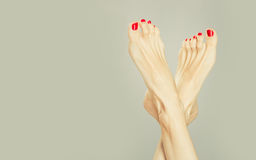Sexy feet. Sexy woman legs with red nail polish Stock Images