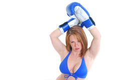 Sexy female boxer Stock Image