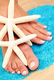 Sexy female feet and hands Stock Image