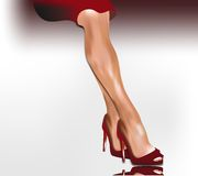 Sexy female legs and business Stock Photography