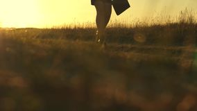 Sexy female legs of a business woman are walking along a country road. business woman walking along a country road with. Sexy female legs of a business woman are stock video footage