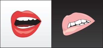 female lips stock photography