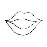 Sexy female lips icon. Vector illustration design Stock Photography