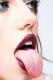 Sexy female lips Stock Photos