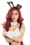 Sexy female model  in bunny costume. Isolated on white background Stock Image