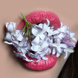 Female mouth with lilac. Open female mouth of beautiful young woman with bright pink lips holds lilac flowers on face background stock photos